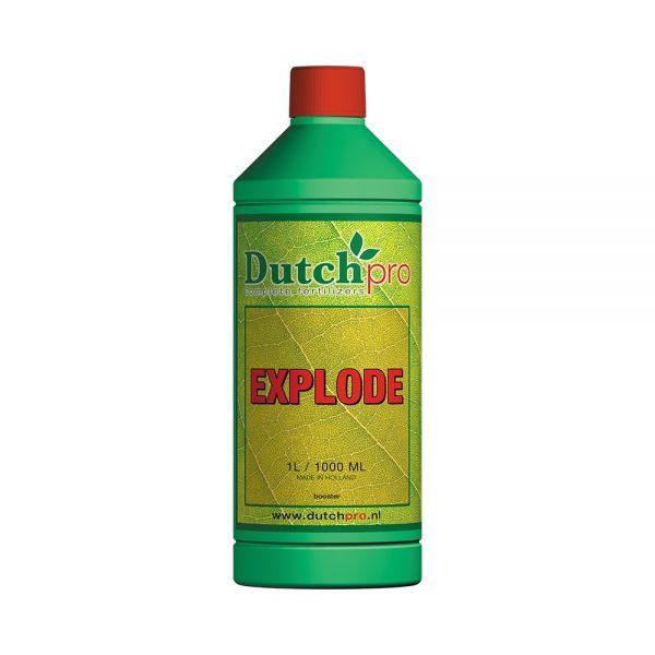 Dutch Pro Explode P421 2164 Image