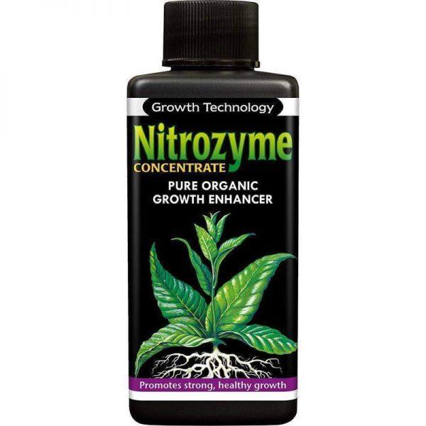 Gt Ionic Nitrozyme 100ml