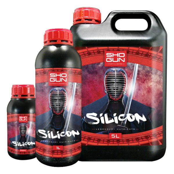 Family Silicon