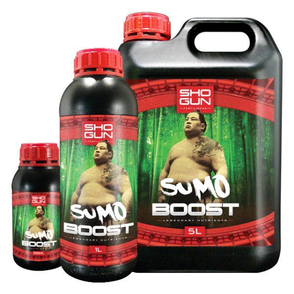Family Sumo